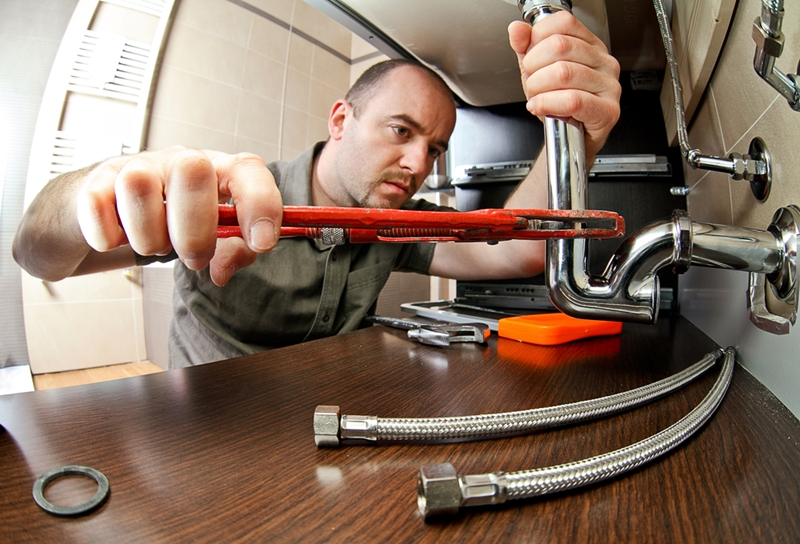 Unless the tenant has caused damage, maintenance work is the responsibility of the property's owner.